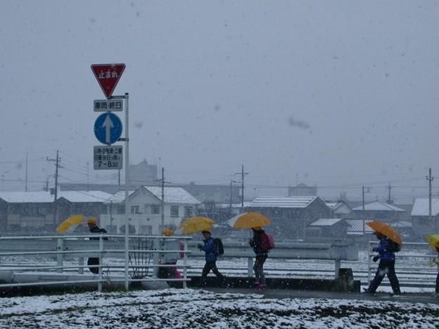 写真: 雪の新学期