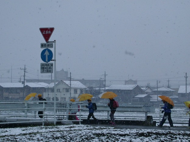 Photos: 雪の新学期
