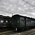 Photos: 大井川鉄道  新金谷駅