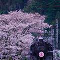 Photos: 2015年SLさくら号折り返し急行