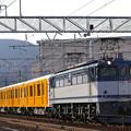 Photos: 銀座線甲種
