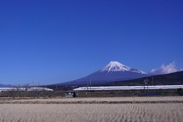 N700系 富士山 離合