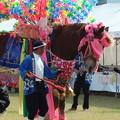 写真: 中米ジャンカ馬踊り