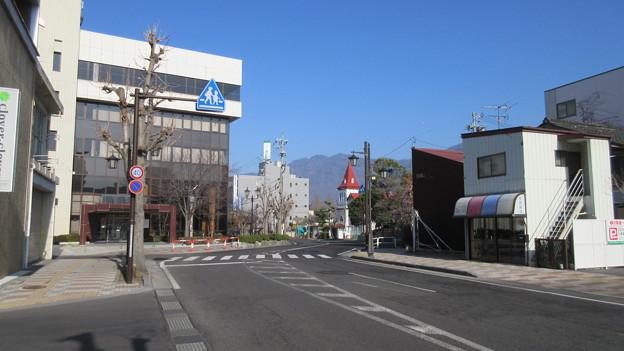 上田城(上田市営 大手門公園)
