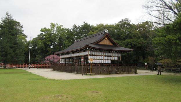 賀茂別雷神社(上賀茂神社。京都市北区)