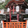 賀茂御祖神社(下鴨神社。左京区)