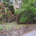 高遠城(長野県伊那市営 高遠城址公園)