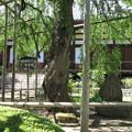 興禅寺(木曽町)