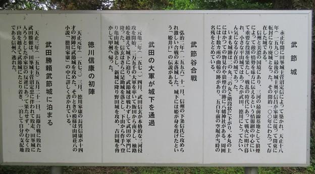 武節城(豊田市)