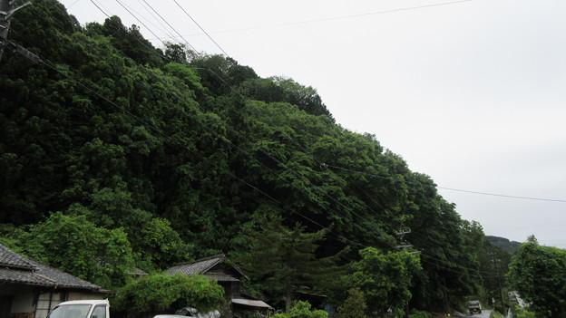 長篠設楽原合戦場(新城市)久間山砦