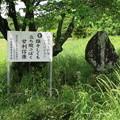 長篠設楽原合戦場(新城市)甘利郷左衛門尉信康之碑