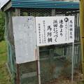 長篠設楽原合戦場(新城市)馬防柵左端