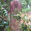 常林寺(新城市)望月甚八郎重氏之墓