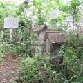 法性寺(新城市)信玄公が撃たれた場所