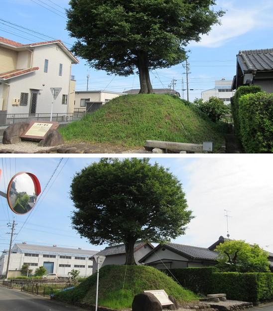 Photos: 旧東海道 木原一里塚(袋井市)
