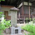 Photos: 常在寺(岐阜市)斎藤道三供養塔