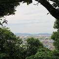 Photos: 小牧山城(小牧市営 史跡小牧山公園)北、稲葉山城方向