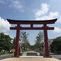 Photos: 鶴岡八幡宮 二の鳥居(鎌倉市)