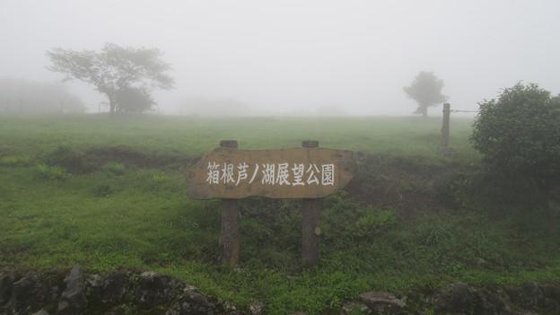 Photos: 箱根芦ノ湖展望公園(御殿場市)