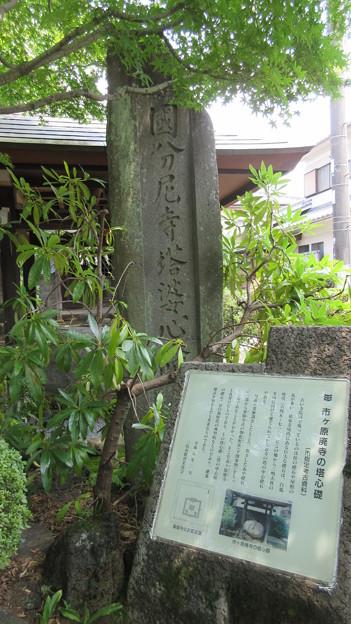 祐泉寺(三島市)伊豆国分尼寺西塔礎石