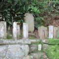 願成就院(伊豆の国市)足利茶々丸墓