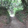 韮山城(伊豆の国市)権現曲輪虎口