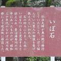 修禅寺奥の院(正覚院。伊豆市)いぼ石