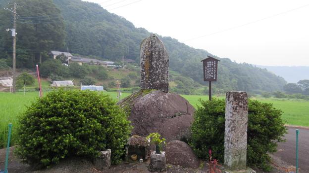 修禅寺奥の院(正覚院。伊豆市)石仏