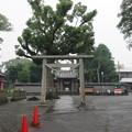 善得寺城(富士市)日吉浅間神社