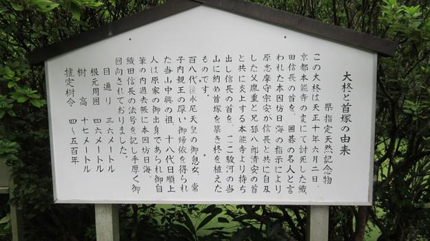 Photos: 西山本門寺(富士宮市)信長首塚・大柊