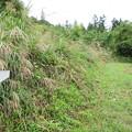 岩櫃山(東吾妻町)登山道 十二様通り