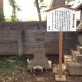勝願寺(鴻巣市)仙石秀久墓
