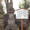 勝願寺(鴻巣市)小松姫墓