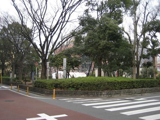 中央区営 浜町公園(日本橋浜町)