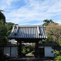 Photos: 小山城/能満寺(吉田町)山門