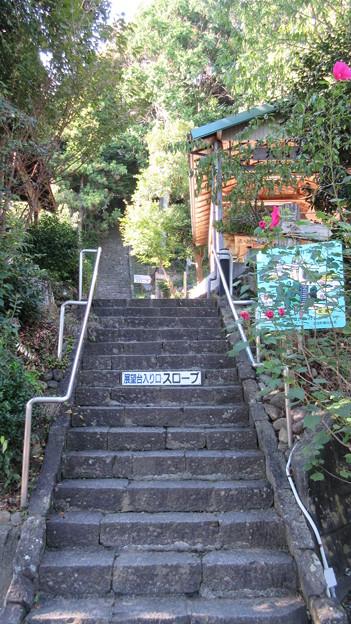 小山城/能満寺(吉田町)能満寺郭・虚空蔵堂への階段