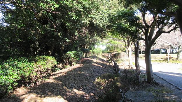小山城(吉田町立 能満寺山公園)二の丸北面土塁