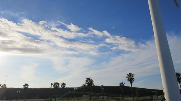 マリンパーク御前崎(御前崎海水浴場。御前崎市)