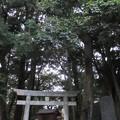 諏訪原城(島田市)諏訪神社