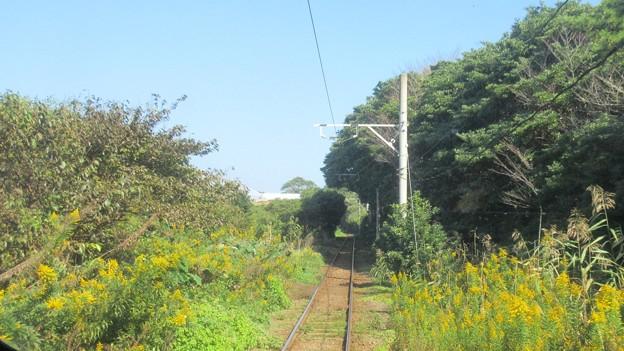 銚子電鉄(銚子市)君ヶ浜~海鹿島(あしかじま)間