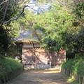 Photos: 東漸寺/網戸城(旭市)熊野神社