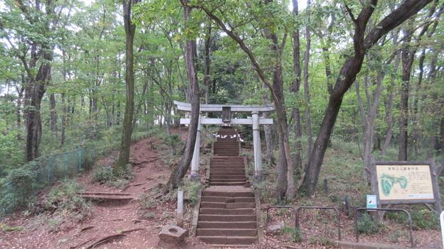 浅間神社(府中市)浅間山南麓