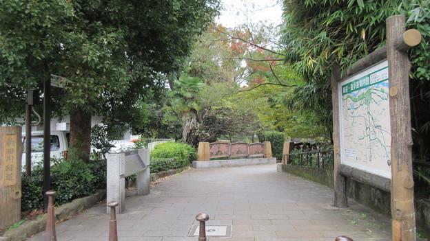 分倍河原古戦場(府中市営 新田川分梅公園)