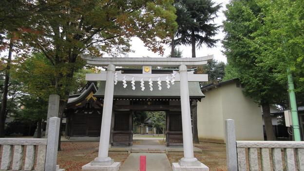 小野神社(多摩市)南鳥居・南門