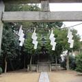 Photos: 関戸城(多摩市)金比羅宮