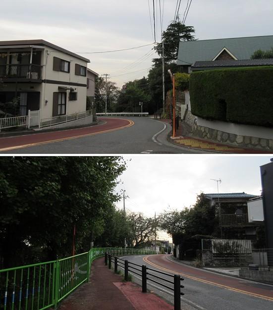 関戸城(多摩市)桜ヶ丘いろは坂