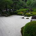 明月院(鎌倉市)庭園