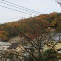 Photos: 松山城(埼玉県比企郡吉見町)岩室観音堂より吉見百穴