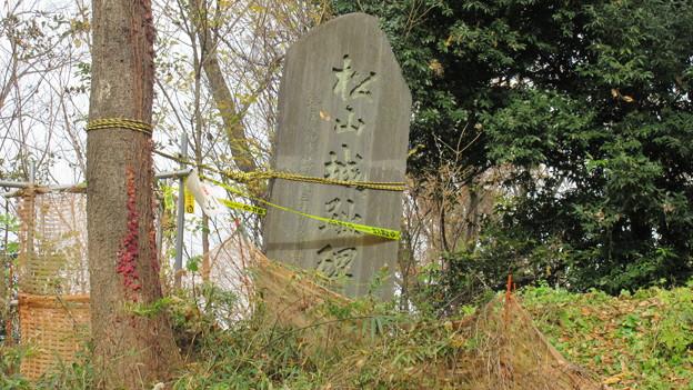 Photos: 松山城(埼玉県比企郡吉見町)主郭 城趾碑