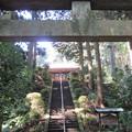 朝夷奈(朝比奈)切通(横浜市金沢区)熊野神社